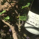 Ian's Friday Tipple, direct from his current tour of Languedoc