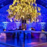 Royal Horticultural Halls announces Bubble as key retained supplier for 2018