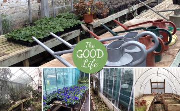 KUDOS Launch 'The Good Life' Project at Penshurst Place and Gardens