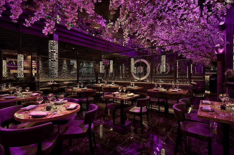 Tattu restaurants poised for significant growth with two