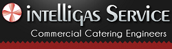 Intelligas Service